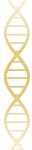 simbolo SAGEN